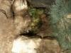 BaptismNeboMadaba2014-029
