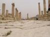Jerash2014-015