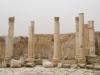 Jerash2014-022