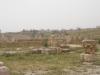 Jerash2014-029
