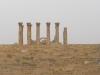 Jerash2014-036