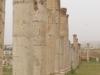 Jerash2014-041