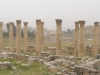 Jerash2014-042