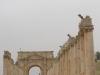 Jerash2014-066