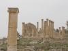 Jerash2014-081