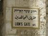 Jerusalem-086