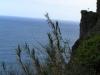 Madeira2012-058