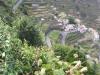 Madeira2012-093