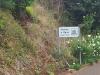 Madeira2012-135