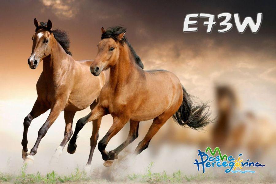e73w-4