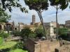Rome-208