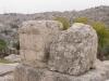 Amman2014-011