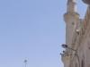 Amman2014-085