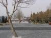 Baku2012-105