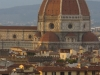 Florence-208