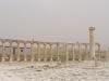 Jerash2014-013