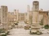 Jerash2014-019