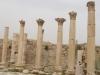 Jerash2014-021