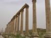 Jerash2014-031