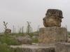 Jerash2014-074