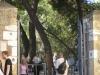 Lisbon2012-087