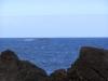 Madeira2012-074