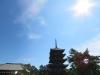 Nara-019