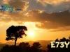 e73y-2