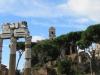 Rome-493